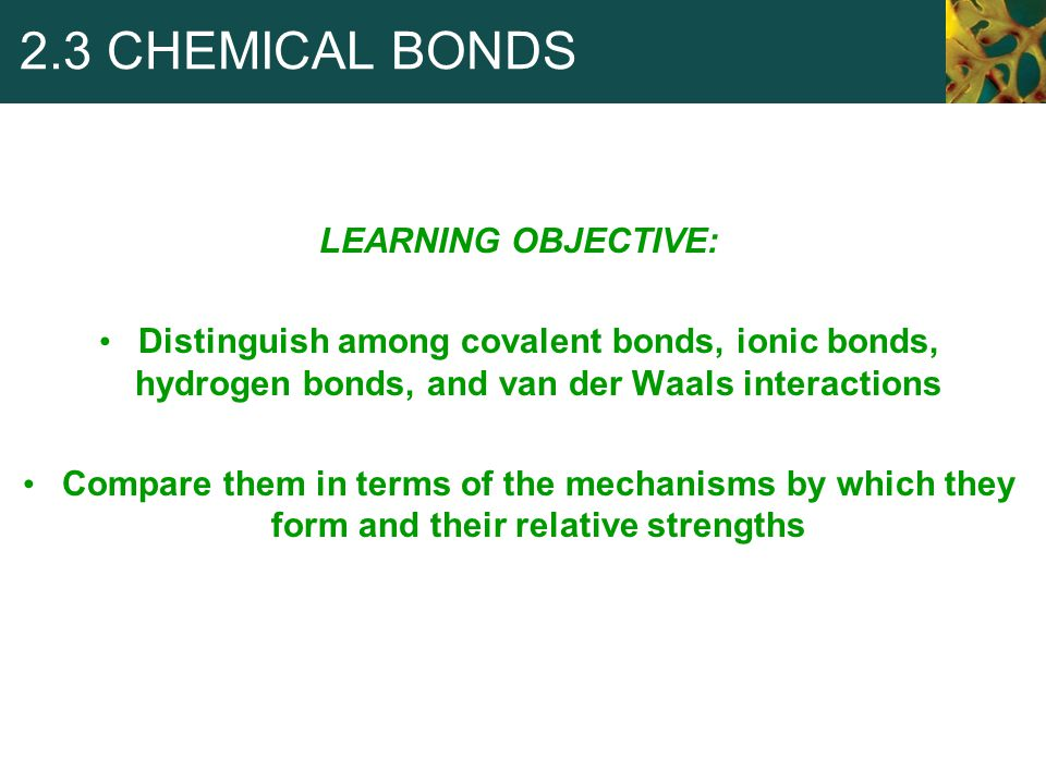 2.3 CHEMICAL BONDS LEARNING OBJECTIVE: