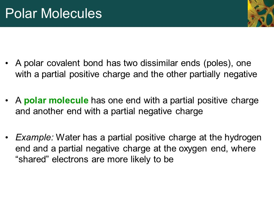 Polar Molecules A polar covalent bond has two dissimilar ends (poles), one with a partial positive charge and the other partially negative.