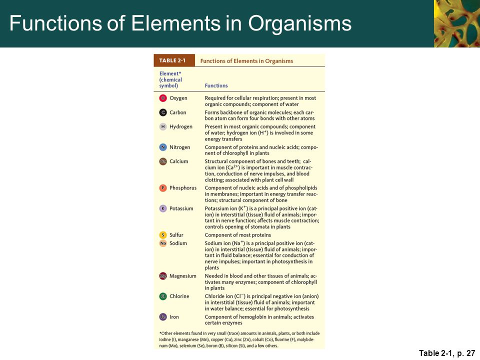 Functions of Elements in Organisms