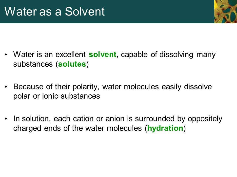 Water as a Solvent Water is an excellent solvent, capable of dissolving many substances (solutes)