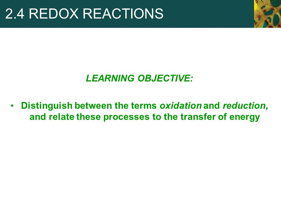 2.4 REDOX REACTIONS LEARNING OBJECTIVE: