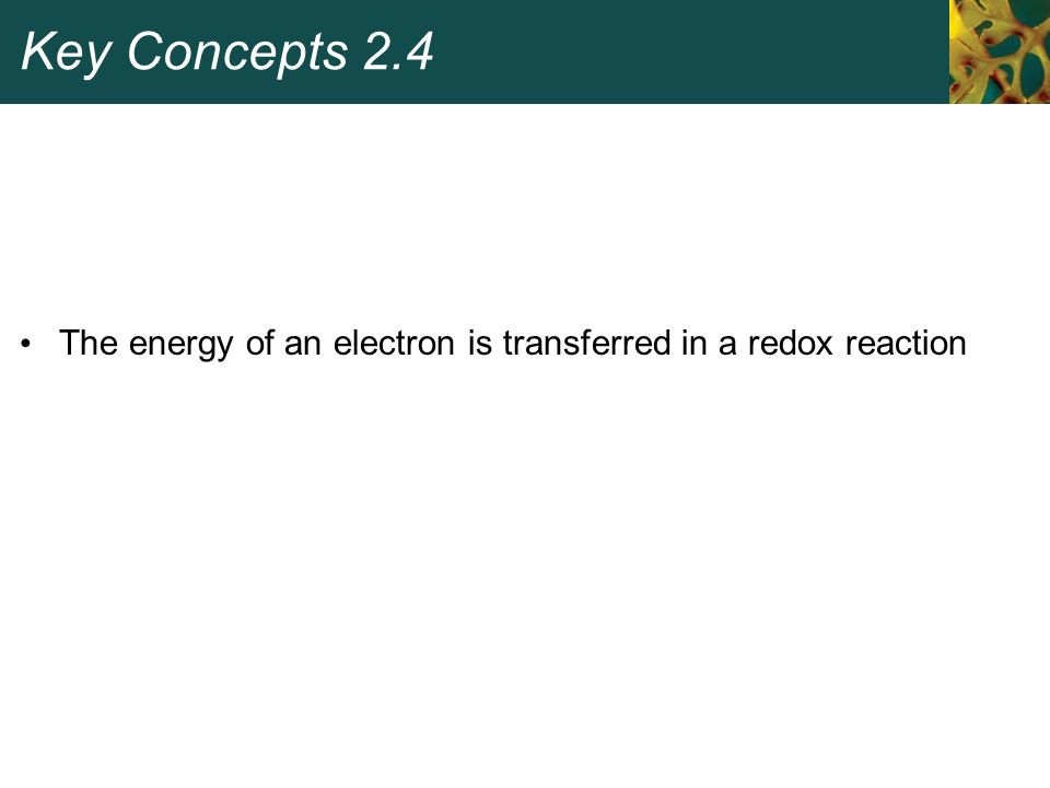 Key Concepts 2.4 The energy of an electron is transferred in a redox reaction