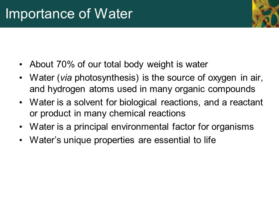 Importance of Water About 70% of our total body weight is water