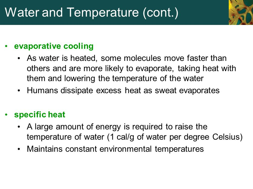 Water and Temperature (cont.)