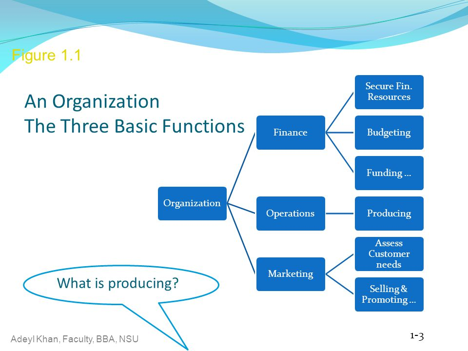 An Organization The Three Basic Functions