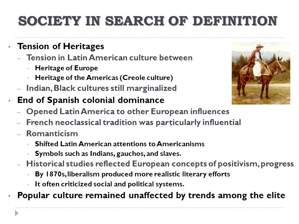 SOCIETY IN SEARCH OF DEFINITION