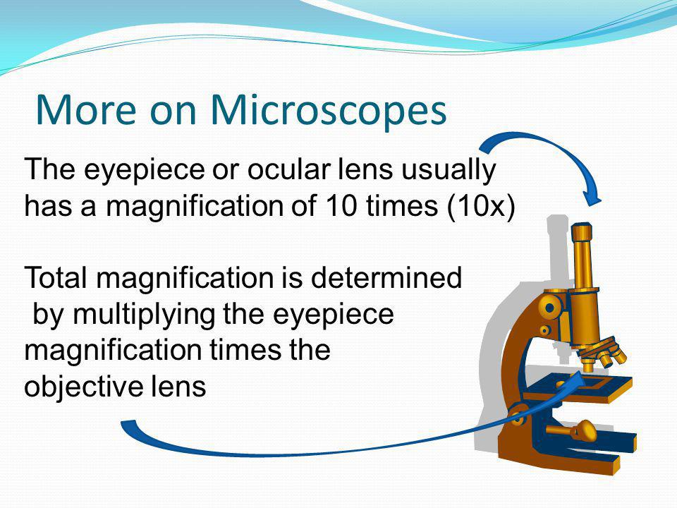 More on Microscopes The eyepiece or ocular lens usually