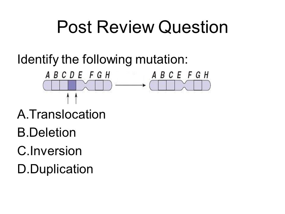 Post Review Question Identify the following mutation: Translocation