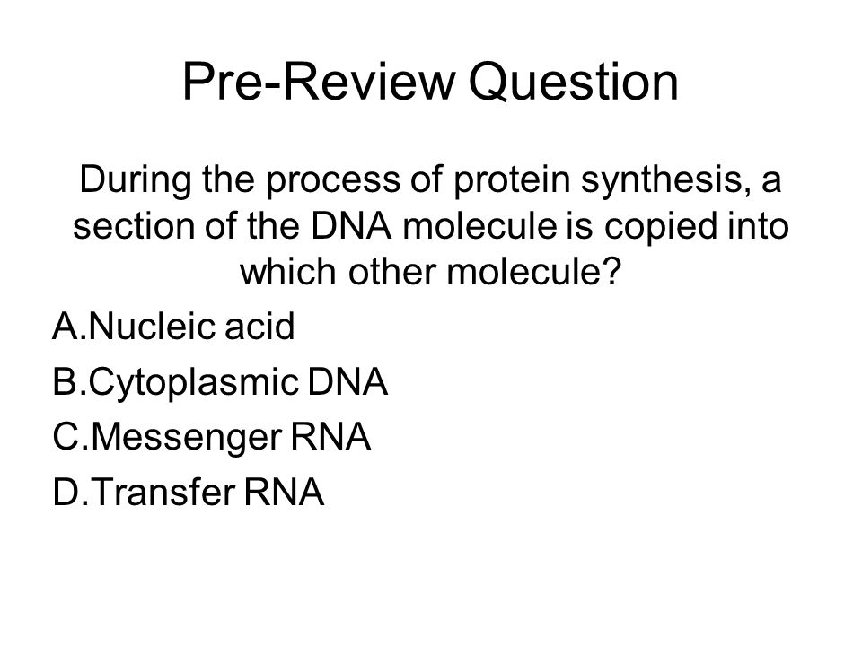 Pre-Review Question During the process of protein synthesis, a section of the DNA molecule is copied into which other molecule