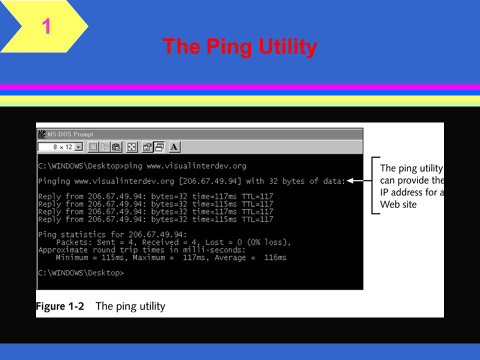 1 The Ping Utility