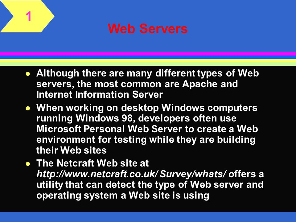 1 Web Servers. Although there are many different types of Web servers, the most common are Apache and Internet Information Server.