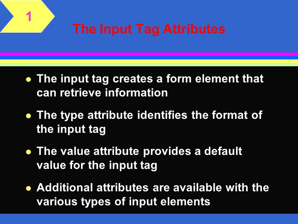 The Input Tag Attributes