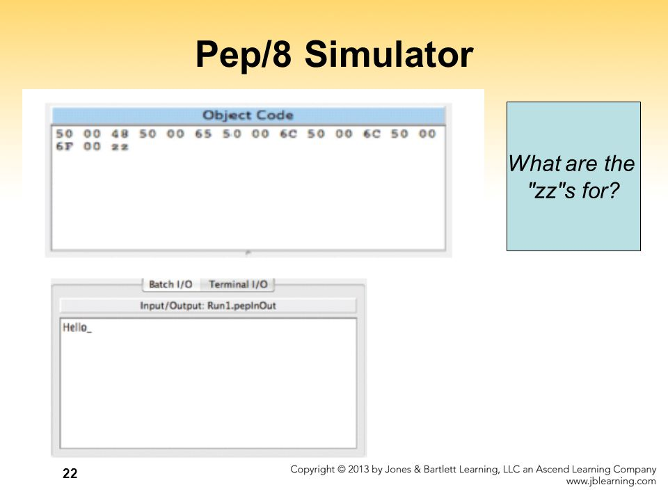 Pep/8 Simulator What are the zz s for