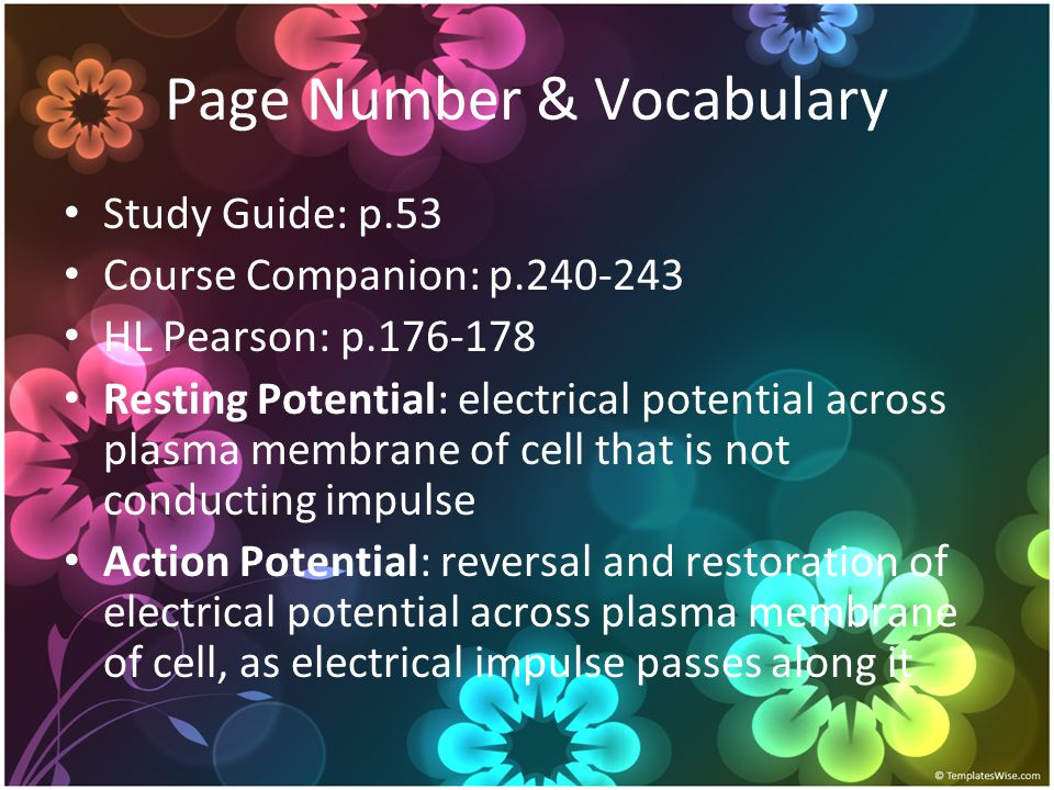 Page Number & Vocabulary