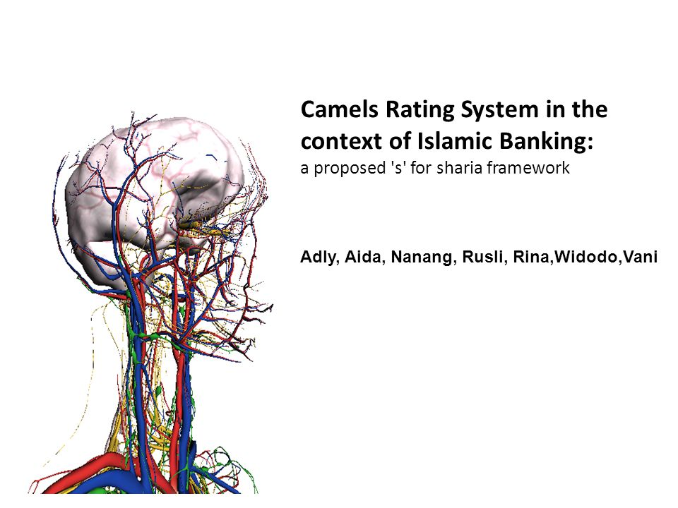 Camels Rating System in the context of Islamic Banking: a proposed s for sharia framework Adly, Aida, Nanang, Rusli, Rina,Widodo,Vani