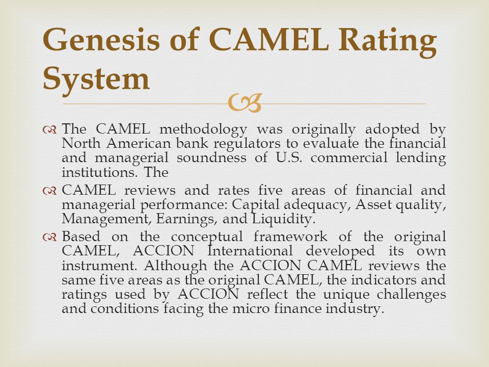 Genesis of CAMEL Rating System