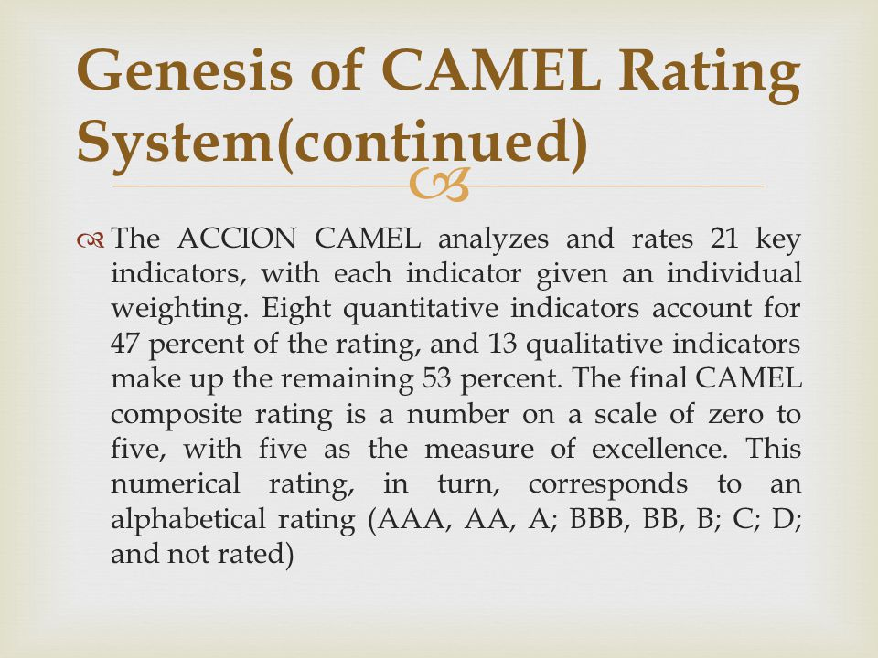 Genesis of CAMEL Rating System(continued)