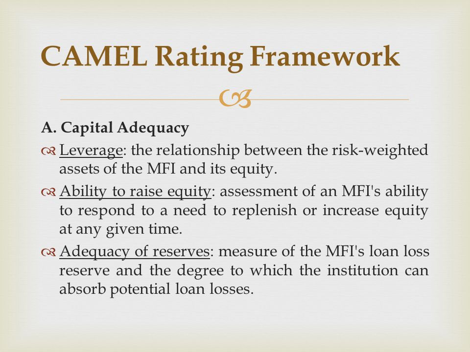 CAMEL Rating Framework