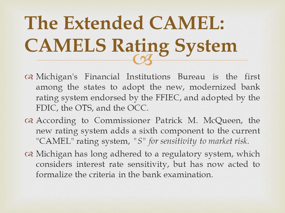 The Extended CAMEL: CAMELS Rating System