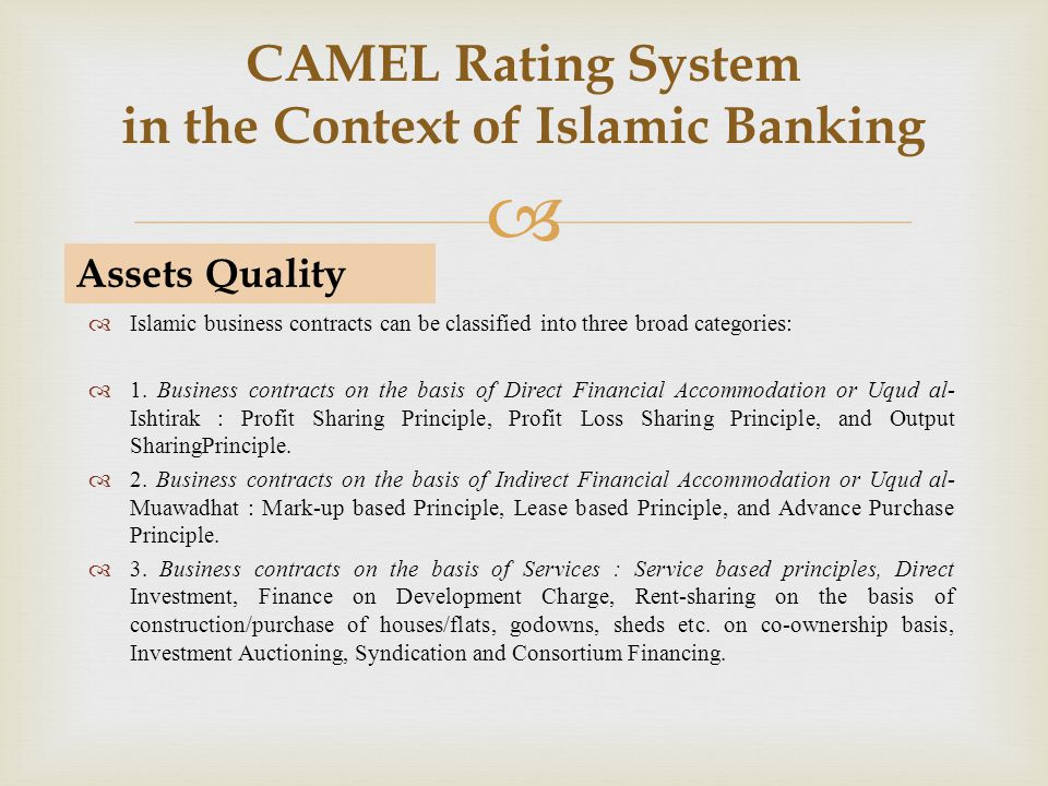 CAMEL Rating System in the Context of Islamic Banking