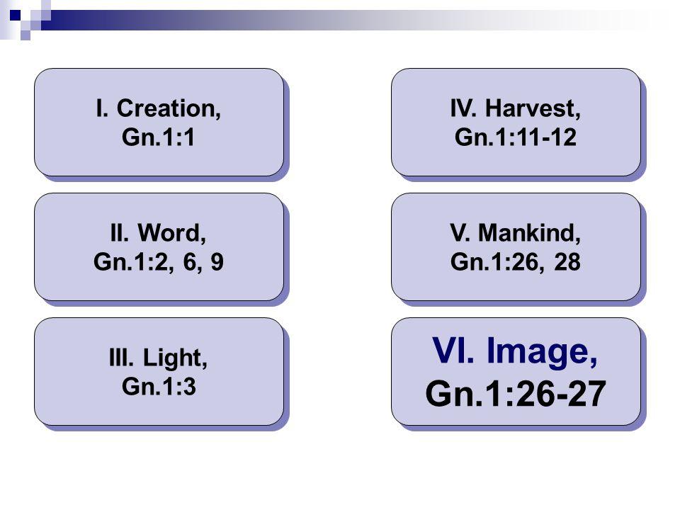VI. Image, Gn.1:26-27 I. Creation, Gn.1:1 IV. Harvest, Gn.1:11-12