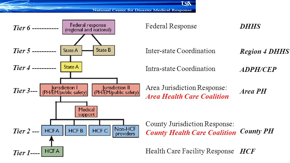 Tier 6 ----------- Federal Response. DHHS. Tier 5 ---------- Inter-state Coordination. Region 4 DHHS.