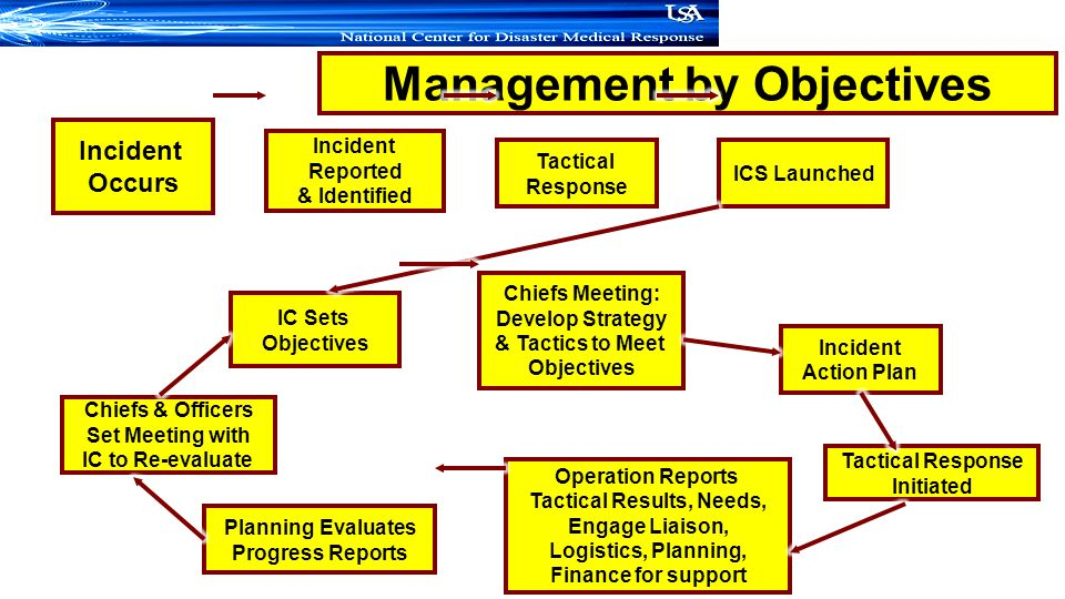 Management by Objectives Tactical Results, Needs,