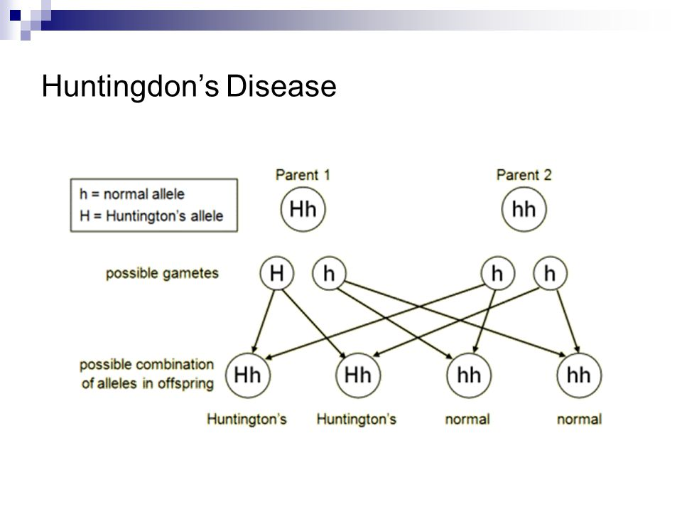 Huntingdon's Disease