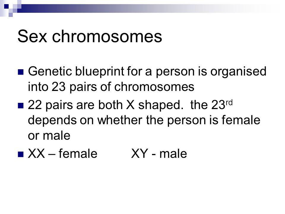 Sex chromosomes Genetic blueprint for a person is organised into 23 pairs of chromosomes.