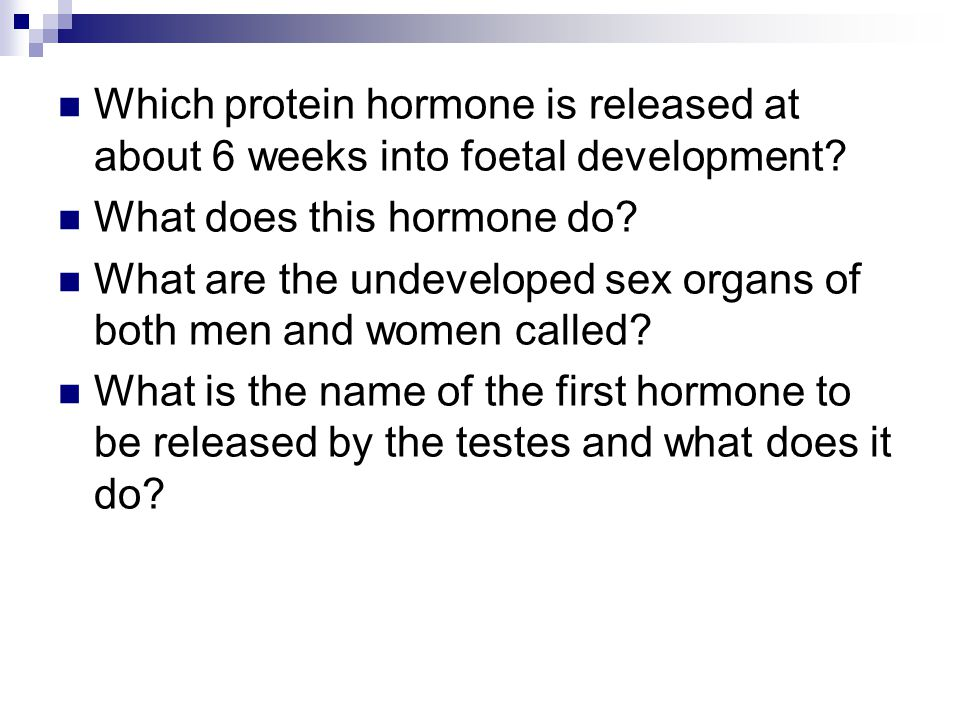 Which protein hormone is released at about 6 weeks into foetal development