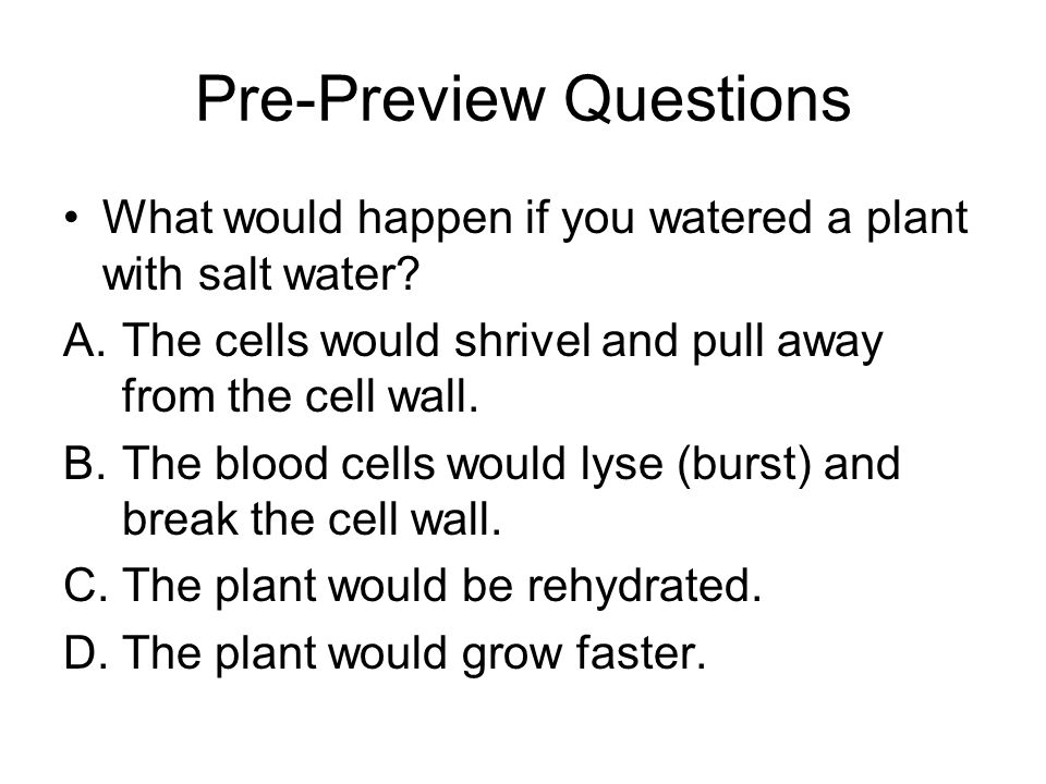 Pre-Preview Questions