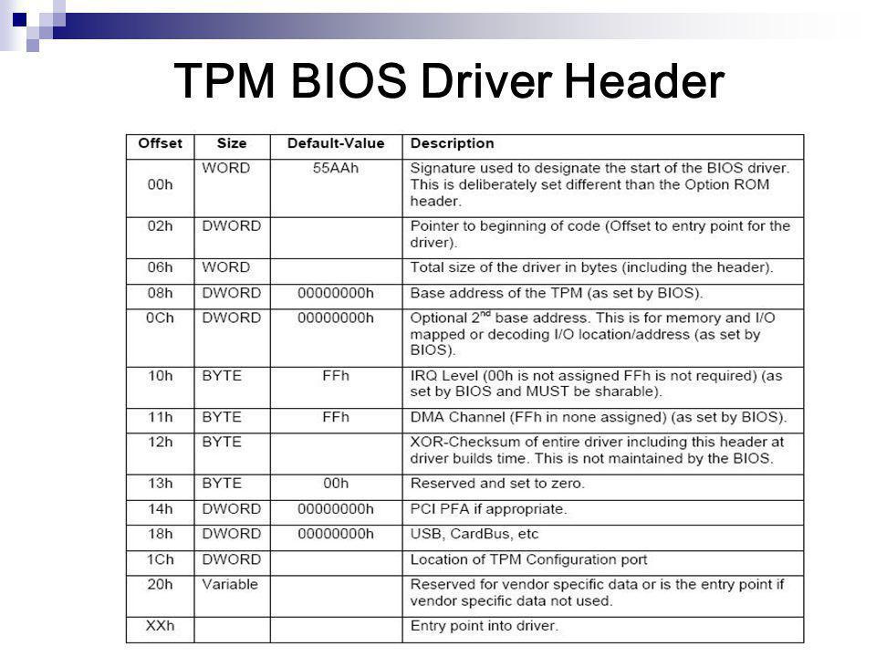 TPM BIOS Driver Header