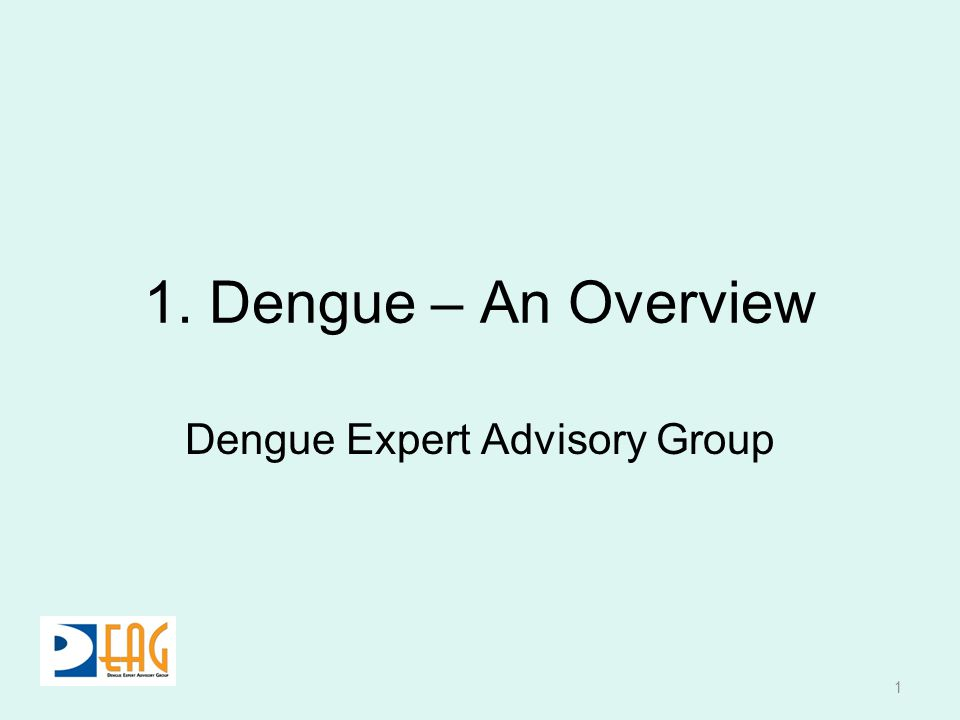 Dengue Expert Advisory Group