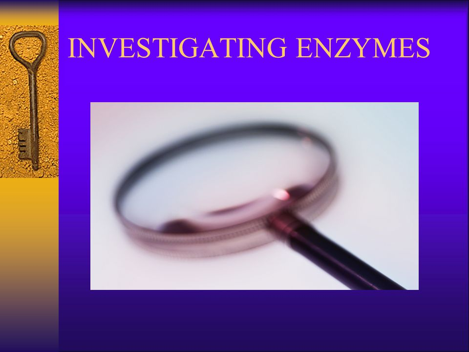 INVESTIGATING ENZYMES