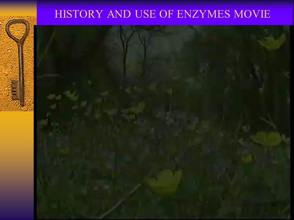 HISTORY AND USE OF ENZYMES MOVIE