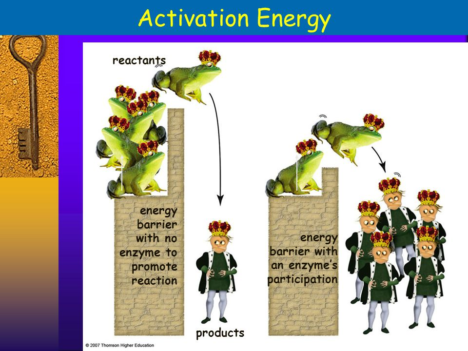 Activation Energy reactants energy barrier with no enzyme to energy