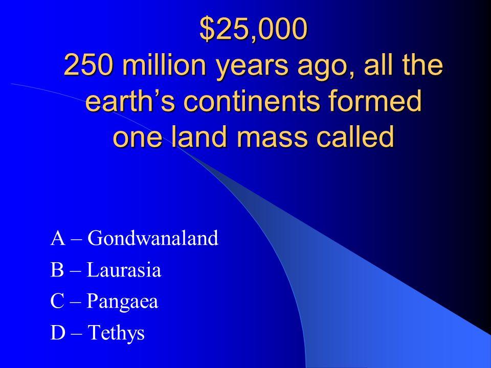 A – Gondwanaland B – Laurasia C – Pangaea D – Tethys