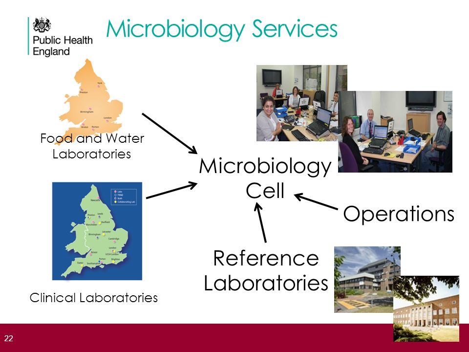 Microbiology Services