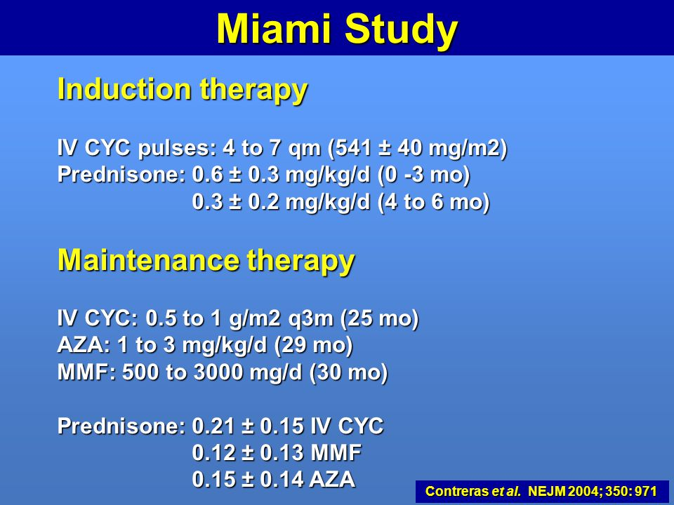 Miami Study Induction therapy Maintenance therapy