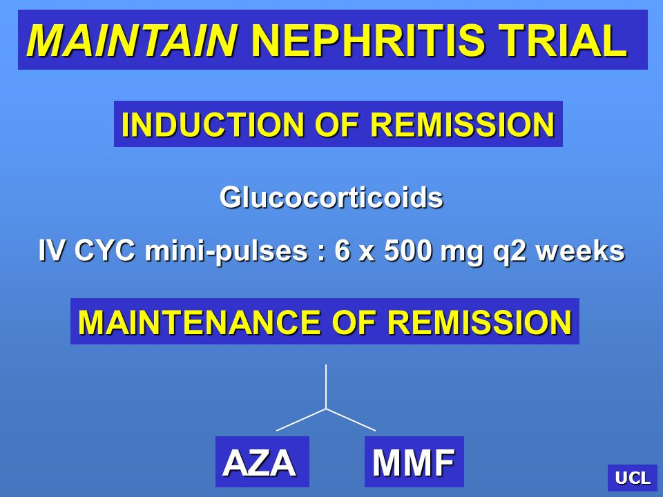 IV CYC mini-pulses : 6 x 500 mg q2 weeks