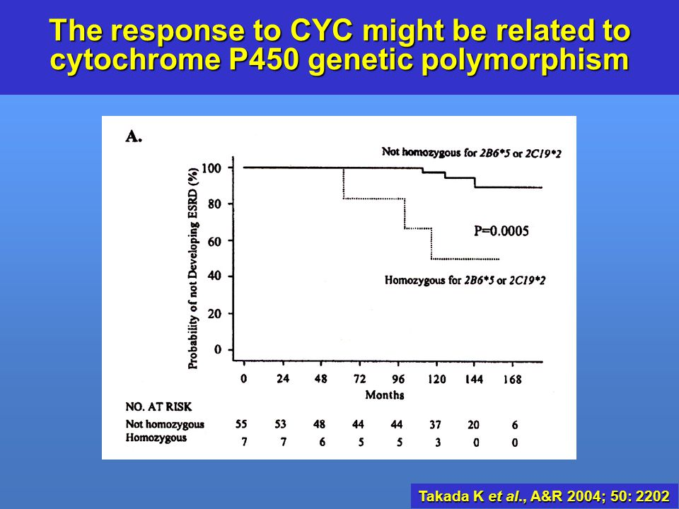 The response to CYC might be related to cytochrome P450 genetic polymorphism