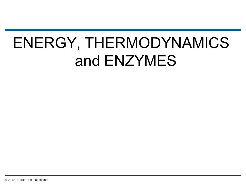ENERGY, THERMODYNAMICS and ENZYMES