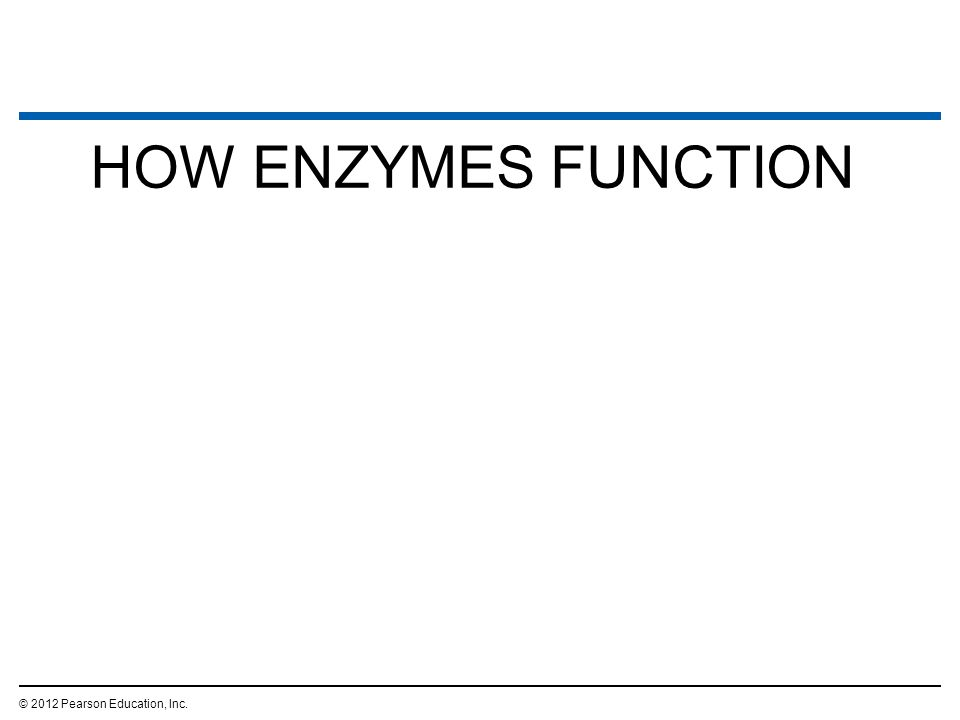 HOW ENZYMES FUNCTION © 2012 Pearson Education, Inc. 16