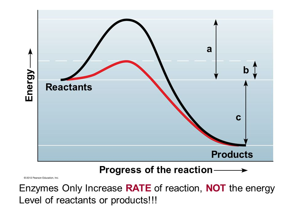 Progress of the reaction