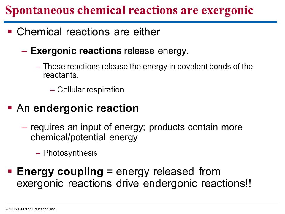 Spontaneous chemical reactions are exergonic