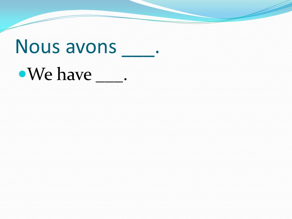 Nous avons ___. We have ___.