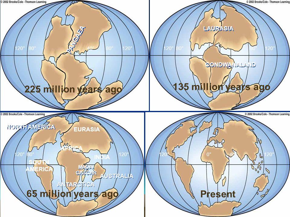 135 million years ago 225 million years ago 65 million years ago