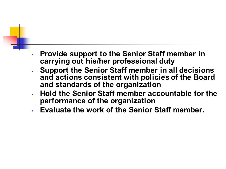 Provide support to the Senior Staff member in carrying out his/her professional duty
