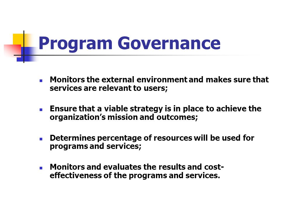 Program Governance Monitors the external environment and makes sure that services are relevant to users;
