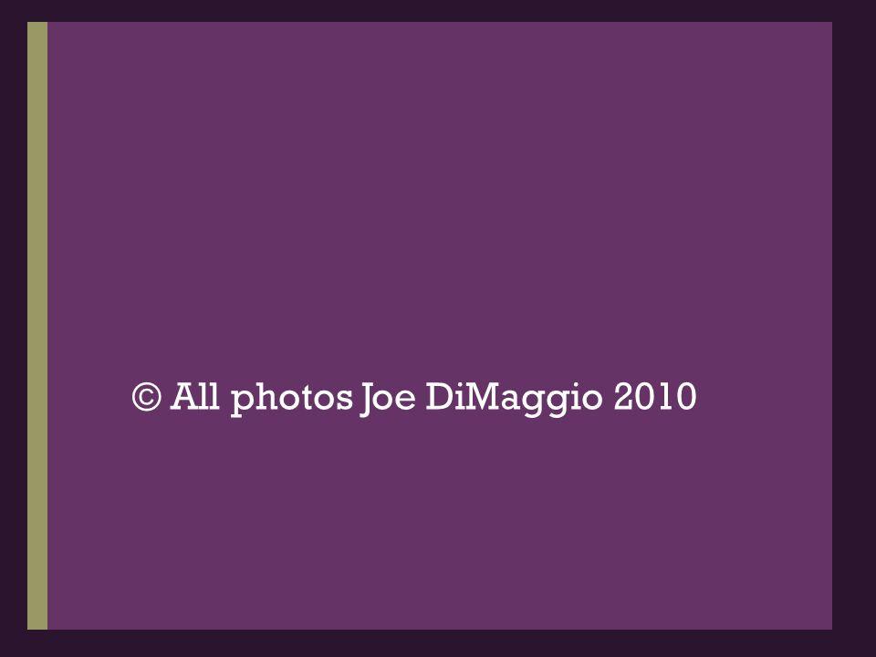 © All photos Joe DiMaggio 2010